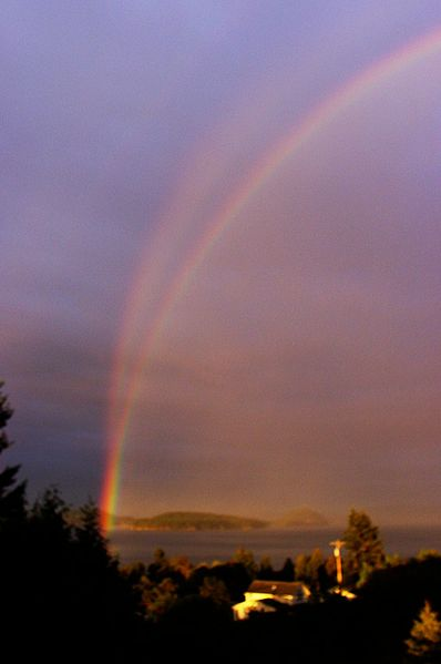 Reflection Rainbow at Skagit Bay, WA by Terry L Anderson