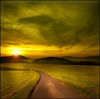Nature Shot #2 by Veronika Pinke