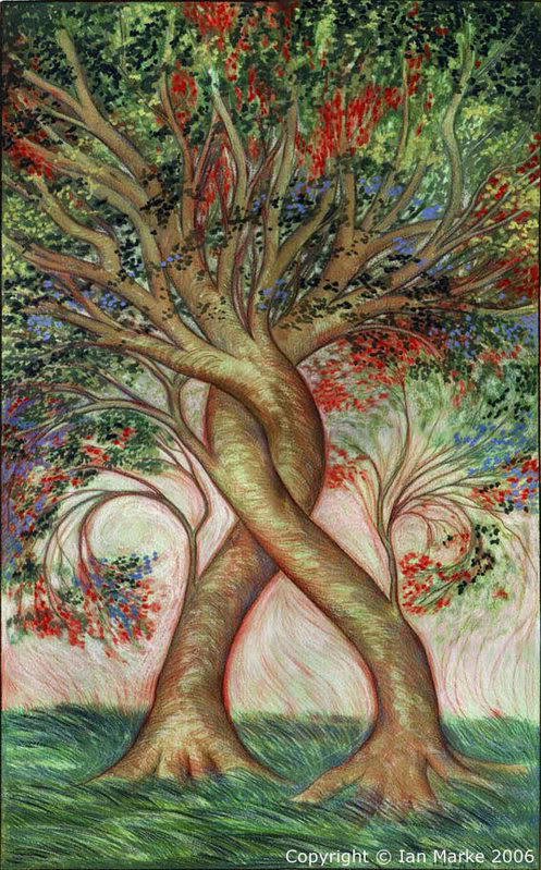 Foundation: The Friendship Tree is conjoined and deeply rooted...