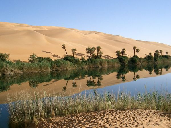 Haiku: The Oasis Inside...