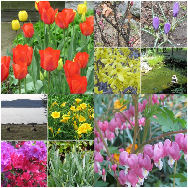 Weekly Photo Challenge: Changing Seasons... Spring