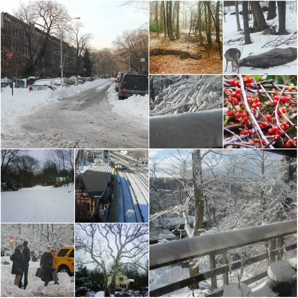 Weekly Photo Challenge: Changing Seasons... Winter