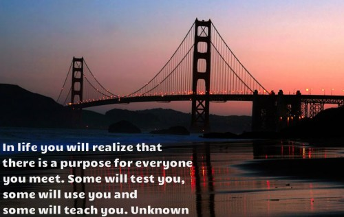 Reflections: Purposeful...