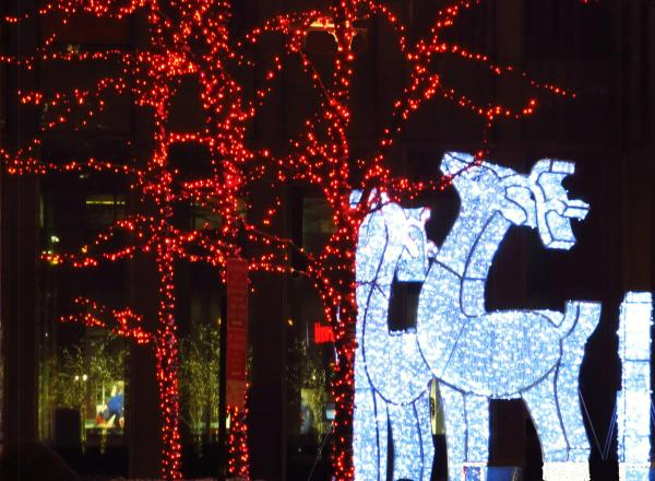 Christmas Is: Holiday lights of love in the form of deer.