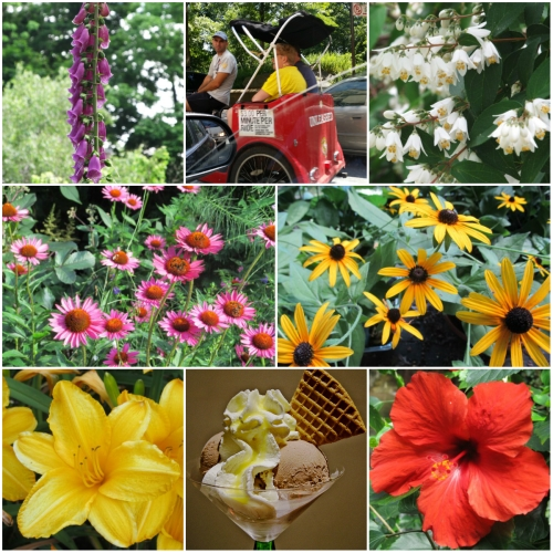 Weekly Photo Challenge: Summer Lovin' - with blooms and  more.