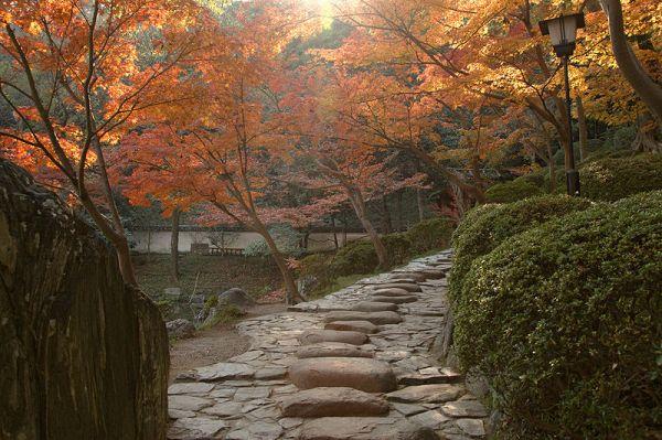 Motivation Mondays: Courage - Steps at Wakayama Castle Nishinomaru Garden