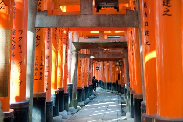 Motivation Mondays: PERSPECTIVE - Fushimi long tunnel of torii gates.