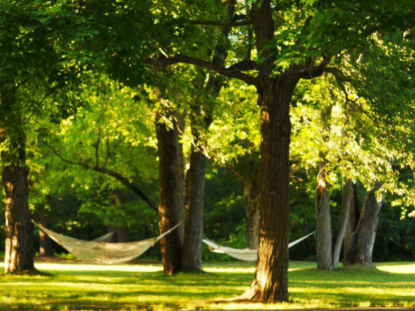 Weekly Photo Challenge: Serenity - Hammocks at Omega Park