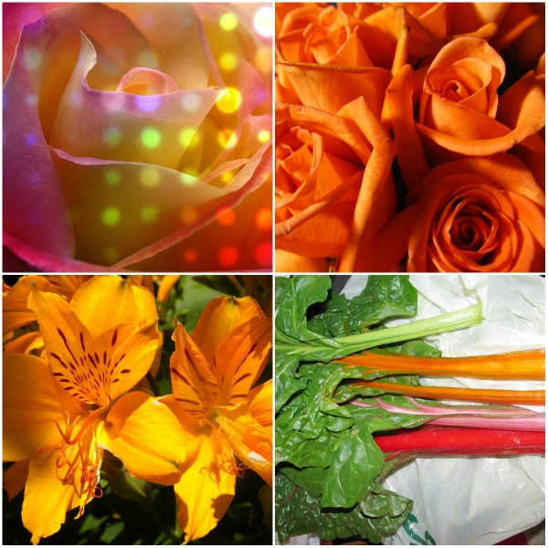Weekly Photo Challenge: ORANGE…