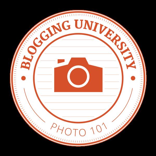 Photo 101 Revisited: Week 1 & 2 - Take Ten!