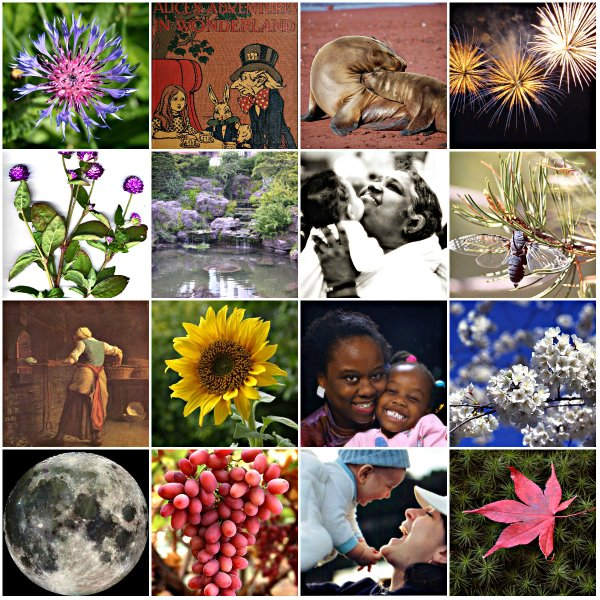 Haiku: Dear Mom - Collage of the seasons of her life