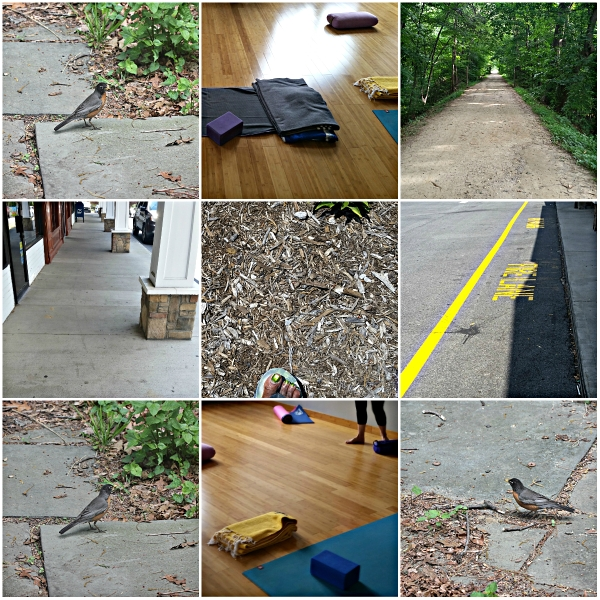 Weekly Photo Challenge: Beneath Your Feet... Yoga class, the Street & Nature
