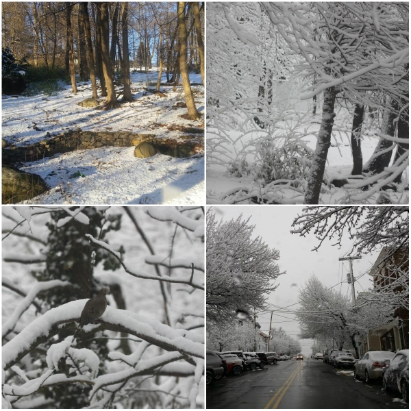 Weekly Photo Challenge: TIME - Snow Time & the transitory nature of the weather.