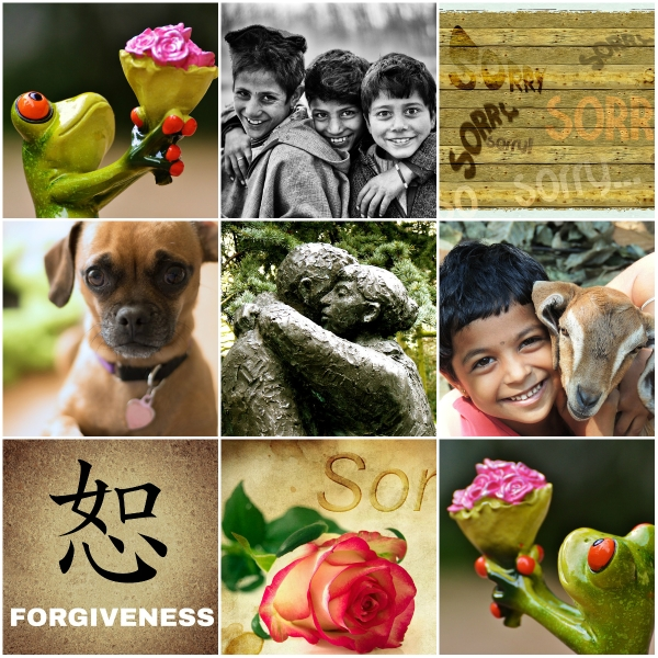 Haiku: An Apology - Helps us cross the bridge of forgiveness