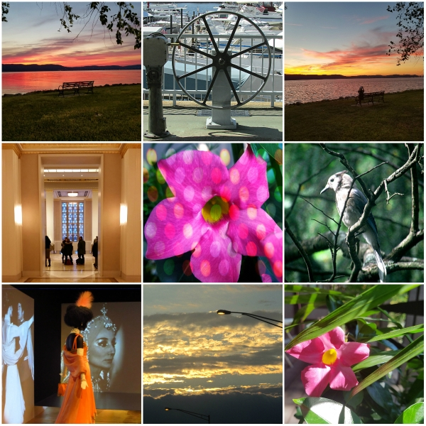 Weekly Photo Challenge: FRAME