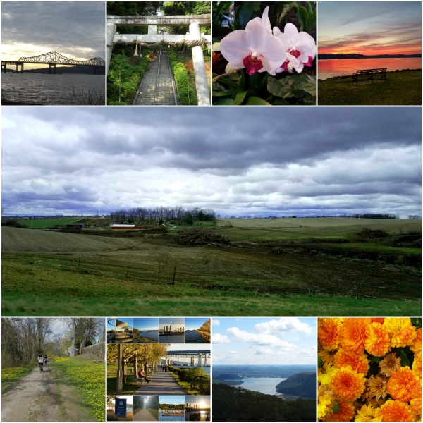 Photo Challenge: EARTH -Landscapes, Trees, Bodies of water, and more...