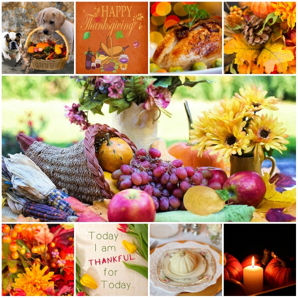 Motivation Mondays: THANKFUL
